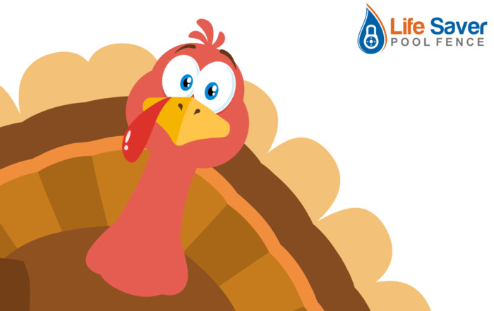 Thanksgiving Safety Tips from Life Saver Pool Fence