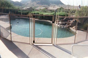 Pool Fences in Black and Tan
